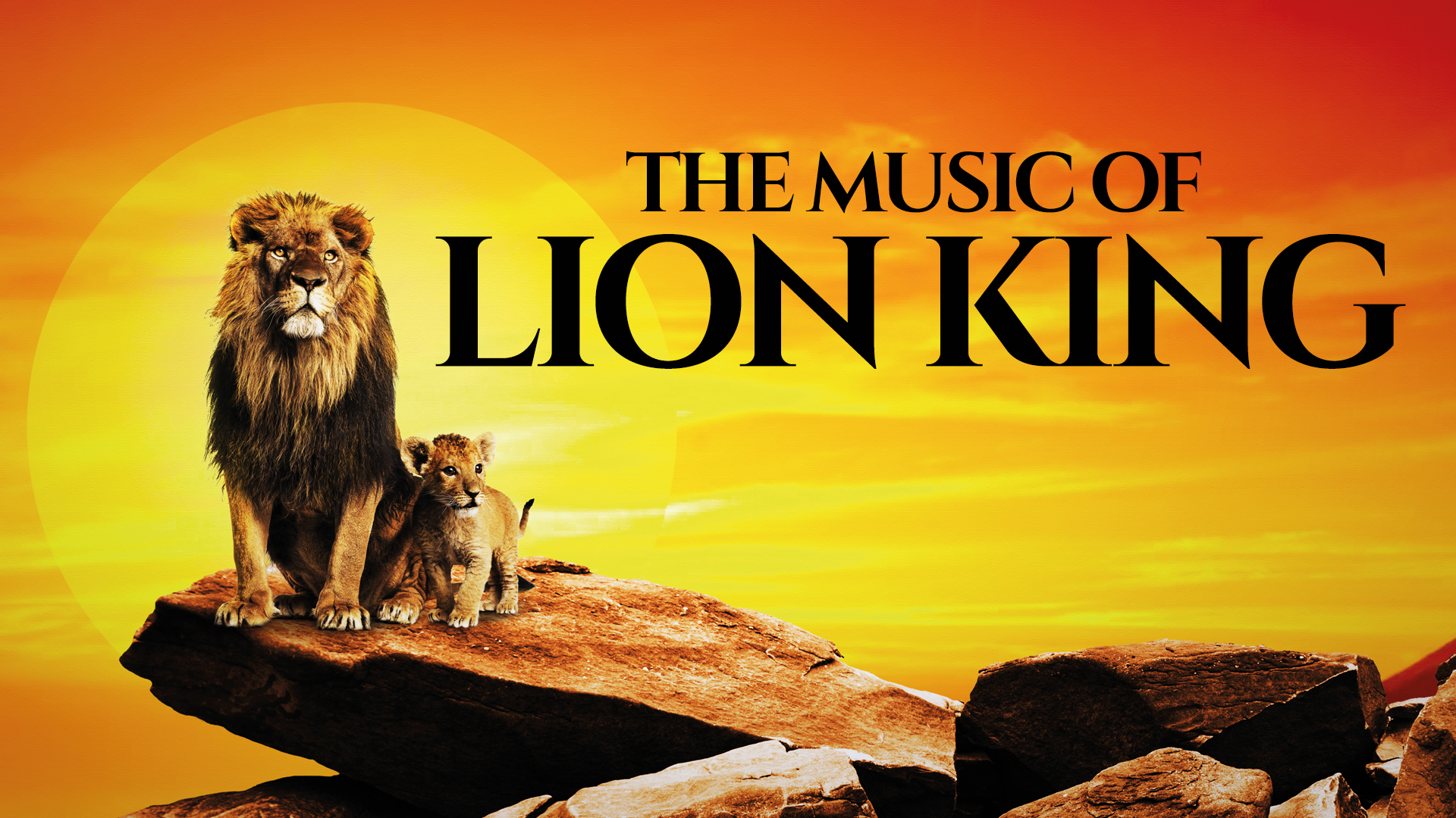 LION KING GALLAKONCERT